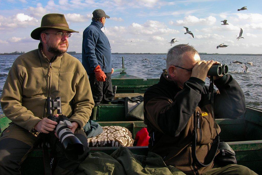Op zoek naar zeearenden