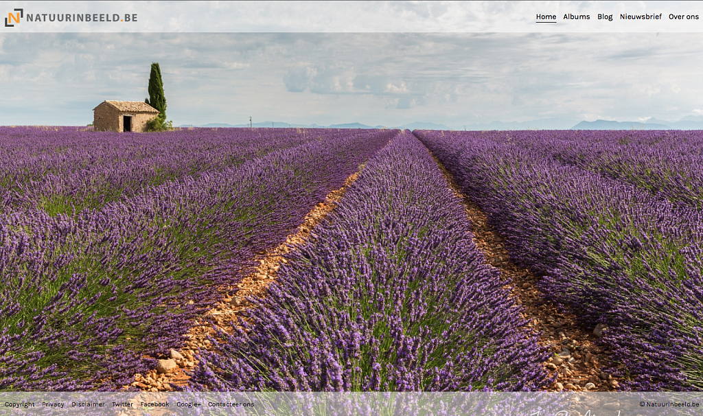 screenshot-website.png